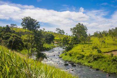 Sogeri river on the Kokoda trail, Papua New Guinea, Pacific by Michael Runkel