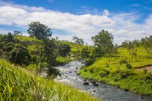 Sogeri river on the Kokoda trail, Papua New Guinea, Pacific by Michael Runkel