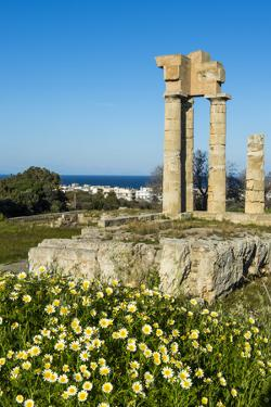 Temple of Apollo at the Acropolis, Rhodes, Dodecanese, Greek Islands, Greece, Europe by Michael Runkel