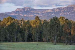The Cliffs of the Grampians National Park at Sunset, Victoria, Australia, Pacific by Michael Runkel