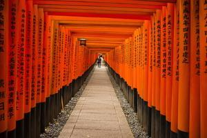 The Endless Red Gates of Kyoto's Fushimi Inari Shrine, Kyoto, Japan, Asia by Michael Runkel