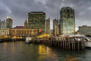 The skyline of Auckland, North Island, New Zealand, Pacific by Michael Runkel
