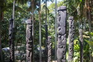 Totem poles from the Sepik River, Botanical Garden, Port Moresby, Papua New Guinea, Pacific by Michael Runkel