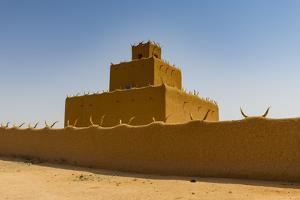 Traditional house, Agadez, Niger by Michael Runkel