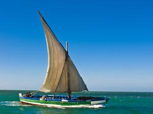Traditional Sailing Boat in Waters of the Banc D'Arguin, Mauritania, Africa by Michael Runkel