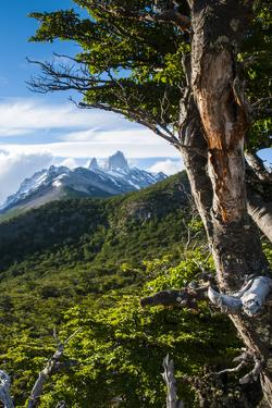 Trek Up to Mount Fitzroy from the UNESCO World Heritage Site El Chalten, Argentina, South America by Michael Runkel