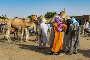 Tuaregs at the animal market, Agadez, Niger by Michael Runkel