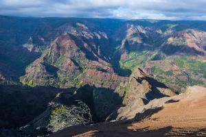 View over the Waimea Canyon, Kauai, Hawaii, United States of America, Pacific by Michael Runkel