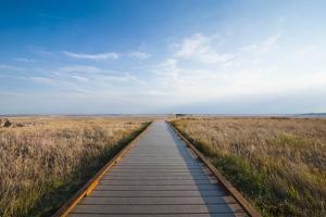 Walkway Going Through the Badlands National Park, South Dakota, Usa by Michael Runkel