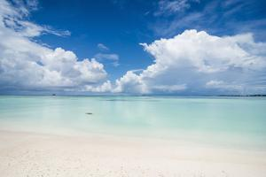 White sand and turquoise water in the beautiful lagoon of Funafuti, Tuvalu, South Pacific by Michael Runkel