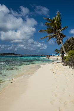 White sand beach and turquoise water on Johny Cay Island, San Andres, Caribbean Sea, Colombia, Sout by Michael Runkel