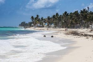 White sand beach, San Andres, Caribbean Sea, Colombia, South America by Michael Runkel