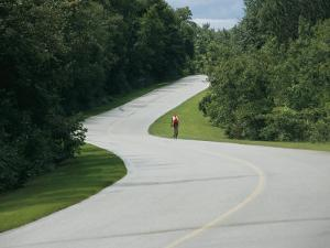 A Cyclist on a Scenic Drive in Gatineau Park by Michael S. Lewis