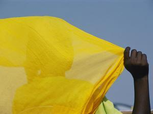 A Person with Her Back to the Camera Holds up a Yellow Piece of Fabric by Michael S. Lewis