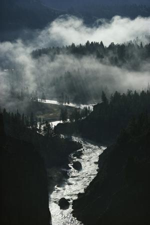 The river cuts silver curves through dark pines and fog. by Michael S. Quinton