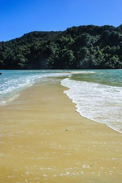 Sand Split in the Abel Tasman National Park, South Island, New Zealand, Pacific by Michael