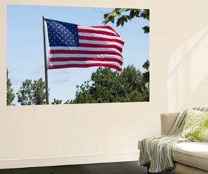 American Flag, Kansas, USA by Michael Scheufler