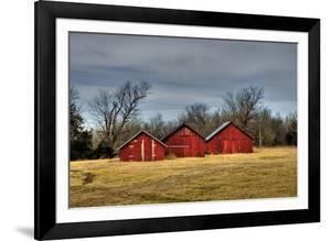 Three Barns, Kansas, USA by Michael Scheufler