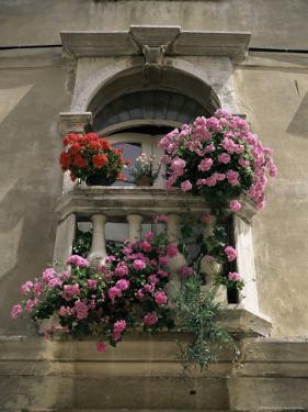 Floral Balconies, Rovinj, Croatia by Michael Short