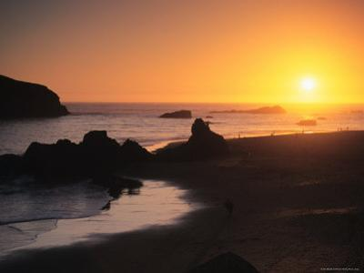 Harris Beach State Park, Brookings, Oregon, USA by Michael Snell
