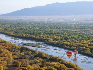 Hot Air Balloons, Albuquerque, New Mexico, USA by Michael Snell