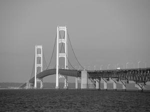 Mackinac Bridge, Mackinaw City, Michigan, USA by Michael Snell