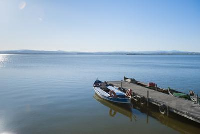 The Albufera, Valencia, Spain, Europe by Michael Snell