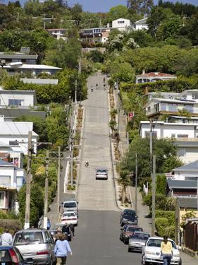 World's Steepest Street, Baldwin Street, Dunedin, Otago, South Island, New Zealand, Pacific by Michael Snell