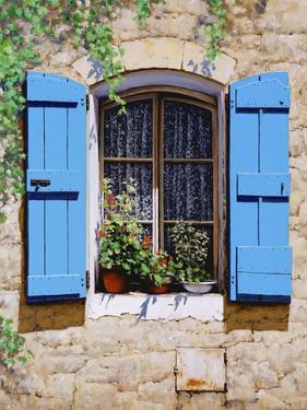 Blue Shutters by Michael Swanson