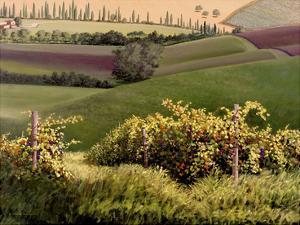 Chianti Hills by Michael Swanson