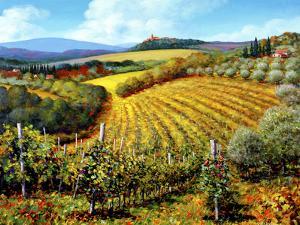 Chianti Vineyards by Michael Swanson