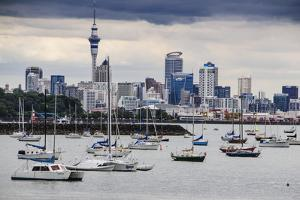 The Harbour of Auckland with the Skyline in the Background by Michael