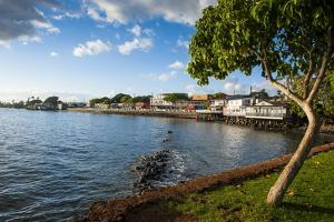 The Town of Lahaina, Maui, Hawaii, United States of America, Pacific by Michael