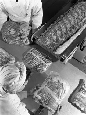 Packing Bacon Rashers, Danish Bacon Company, Selby, North Yorkshire, 1964 by Michael Walters