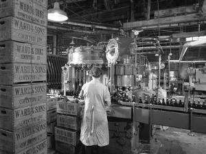 Ward and Sons Soft Drink Bottling Plant, Swinton, South Yorkshire, 1960 by Michael Walters