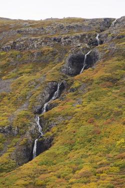West Fjords, Iceland, Polar Regions by Michael