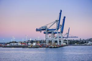 Wharf in the Harbour of Auckland, North Island, New Zealand, Pacific by Michael