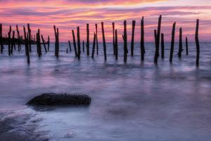 Delaware Bay Sunrise by michaelmill