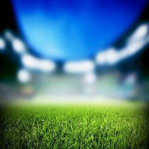 Football, Soccer Match. Grass close Up. Night Event Lights on the Stadium. by Michal Bednarek