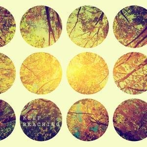 Inspirational Circle Design - Autumn Trees: Don't Forget to Look Up Every Now and Again by Michal Bednarek