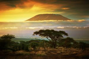 Mount Kilimanjaro and Clouds Line at Sunset, View from Savanna Landscape in Amboseli, Kenya, Africa by Michal Bednarek