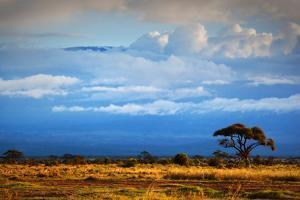 Mount Kilimanjaro Partly in Clouds, View from Savanna Landscape in Amboseli, Kenya, Africa by Michal Bednarek