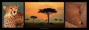 African Savannah by Michel & Christine Denis-Huot