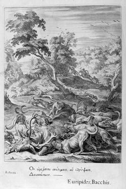 Actaeon Turned into a Stag and Devoured by His Hounds, 1655 by Michel de Marolles