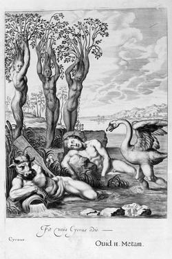 Cygnus Transformed into a Swan and Phaeton's Sisters into Poplars, 1655 by Michel de Marolles