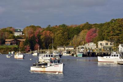 Autumn at New Harbor, Maine, USA