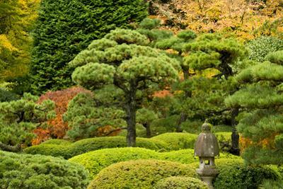 Autumn, Flat Garden, Portland, Oregon, Usa