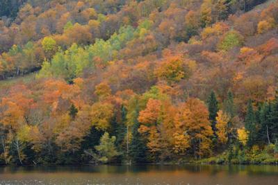 Autumn on Echo Lake, Franconia Notch State Park, New Hampshire, USA