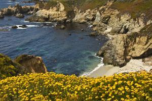 Beach and Cove, Garrapata State Park, California, USA by Michel Hersen