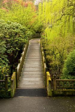 Bridge, Crystal Springs Rhododendron Garden, Portland, Oregon, Usa by Michel Hersen